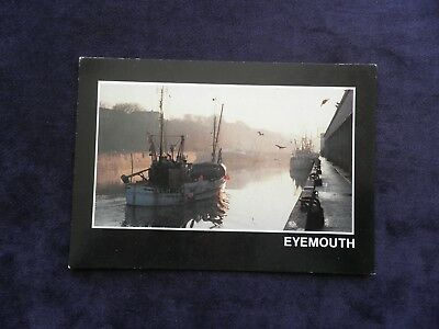 Vintage Postcard Eyemouth Scottish Borders Berwickshire Harbour from fish market