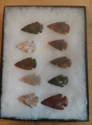 Authentic Lot Of 10 Illinois Indian Arrowheads W/ryker Mount.