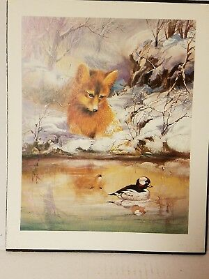 Art,  Fox And Duck Print On Corkboard, Italian art, Fox art, Ducks art, mancaves