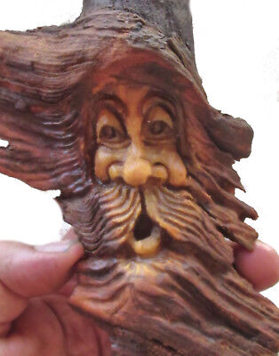 Tree Gnome Carved Forest Face Wood Spirit Carving Knot Head Hobbit Sculpture