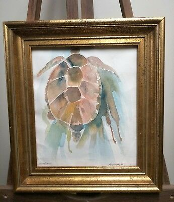 "Ann Warnes ""Green Turtle"" Watercolour, 1990."