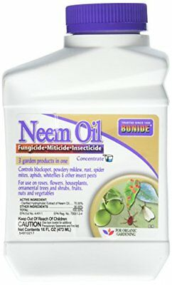 Bonide 037321000242 Neem Oil Fungicide Miticide Insecticide Concentrate 16 (1)