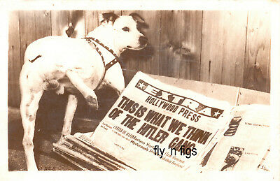 WWII U.S. RPPC -  HOMEFRONT SUPPORT - DOG COMMENTARY on HITLER