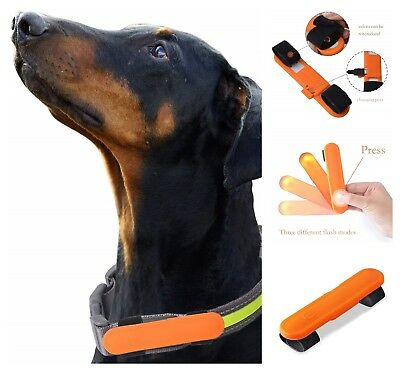 LED Dog Glow Collar USB Rechargeable Light Up Flashing Dog Straps Attachment