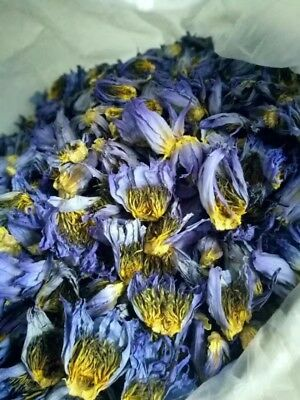 Egyptian lotus 1 oz sacred blue lily nymphaea caerulea organic blue lotus dried whole flower grade a nymphaea caerulea 1oz mightylinksfo
