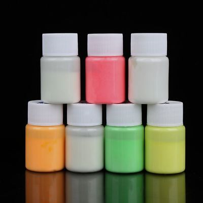 20g Cool Bright Party Glow In The Dark Luminous Paint Acrylic Pigment