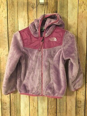 The North Face 3T Toddler Girl Osito Hooded Fleece Coat Jacket EUC
