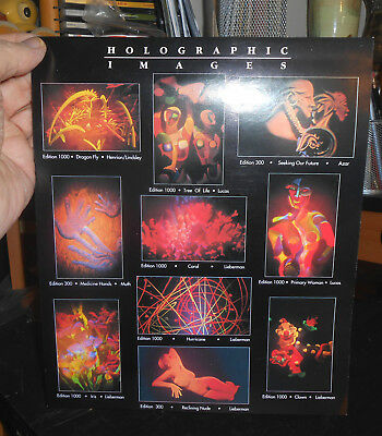 Larry Lieberman C Project Hologram Flyer White Light Works