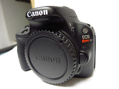 Canon SL-1 DSLR body only: MINT! Free Ship in Canada