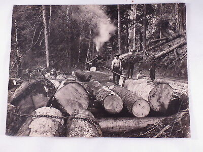 Vintage Cabinet Card Photo of 8  Men,Timber Mill Worker,Lumber Jacks,Sawmill