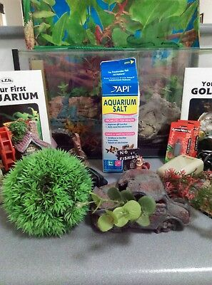 Rectangle Fish Tank and Aquarium Accessories/Kit (All you need is fish!)