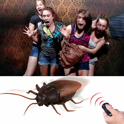 Giant Cockroach, Remote Control Cockroach, RC Cockroach, fun toy, Fast shipping