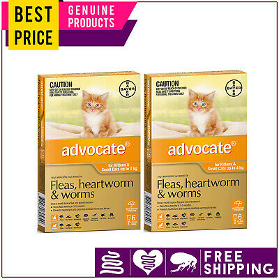 ADVOCATE for Cats 12 Doses + FREE 4 Doses ORANGE Pack Upto 4 Kg