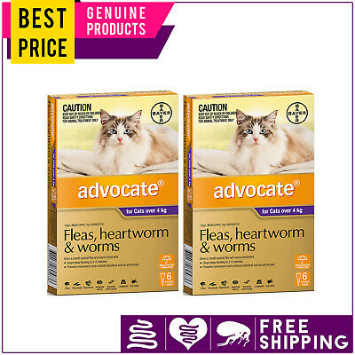 ADVOCATE for Cats 12 Doses + FREE 4 Doses PURPLE Pack Over 4 Kg