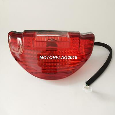 Taillight Tail Light Scooter Tank Sporty Roketa Bahama Sunl VIP Future Champion