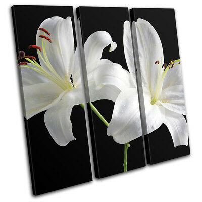 White Flowers Contemporary Modern Floral TREBLE CANVAS WALL ART Picture Print