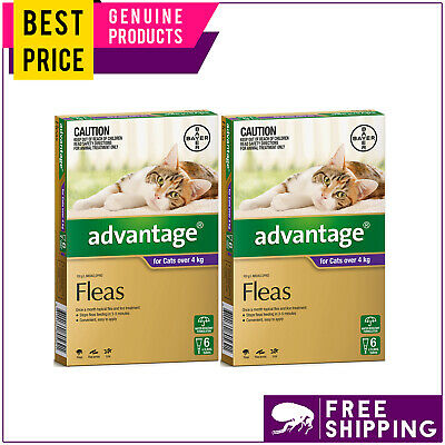 ADVANTAGE for Cats Over 4 Kg PURPLE 12 Doses + FREE 4 Doses Flea Treatment