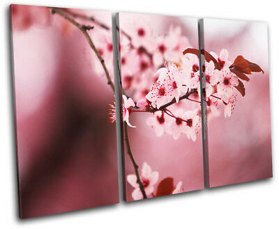 Landscapes Cherry Blossom Tree TREBLE CANVAS WALL ART Picture Print VA