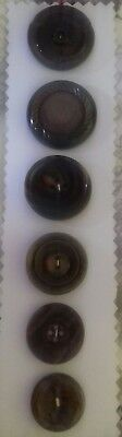 Antique Vintage Buttons Collectable 6 plastic 1930's 40's brown sewing craft