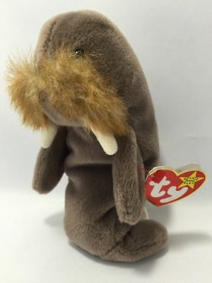 Jolly Ty Beanie Baby Jolly Walrus Plush Collectible
