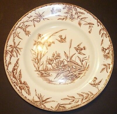 Antique Ridgways Staffordshire Aesthetic Movement Plate Indus Brown 1877