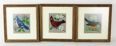 3 BIRDS CARDINAL BLUE JAY TRIO NEEDLEPOINT PICTURE ART Framed Completed 11 x 10