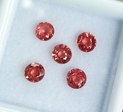 5 pcs. 4mm. TOP!! Round Padparadscha Sapphire Great Color Excellent Cut RARE!