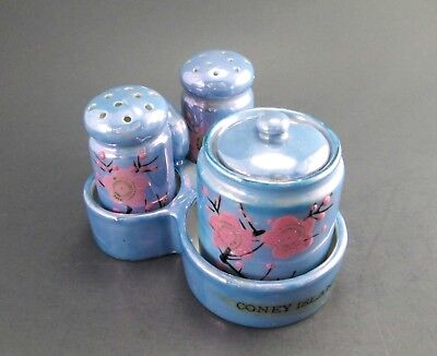 Vintage Blue Luster Hand Painted Condiment Set - Salt and Pepper Shakers and Mus