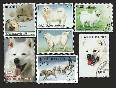 SAMOYED ** Int'l Dog Postage Stamp Collection ** Great Gift Idea **