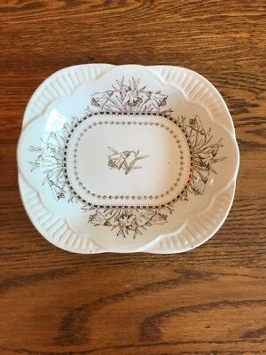 Brownfield & Sons Chester Transferware Butter Pat Antique Victorian