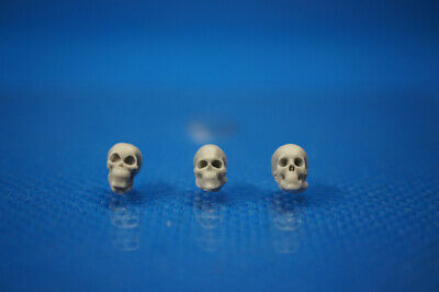 Resin Kit 384 1/35 Human Skulls (3pcs)