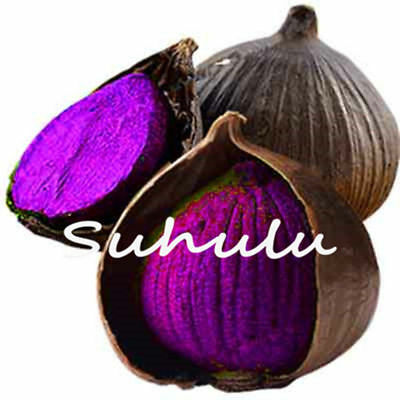 Pure Organic Garlic Purple Seeds Black Natural And Vegetable And 100 Pcs