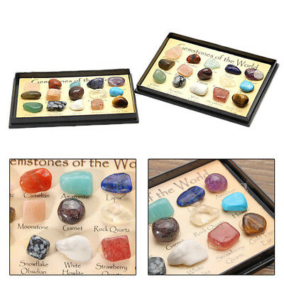 12x/Sets Natural Stones Crystal Mineral Collectibles Specimen DIY Jewelry Making