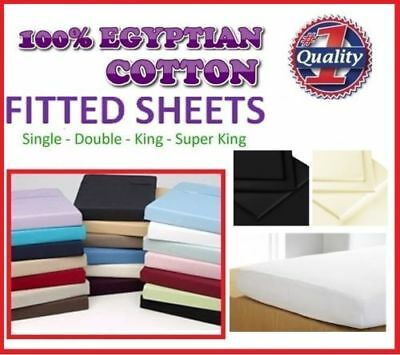 Luxury 100% EgyptianCotton 200TC Fitted Sheet Single Small Double King Superking