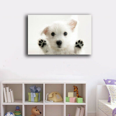 Framed Canvas Prints Stretched A Cute Dog Wall Art Home Decor Gift