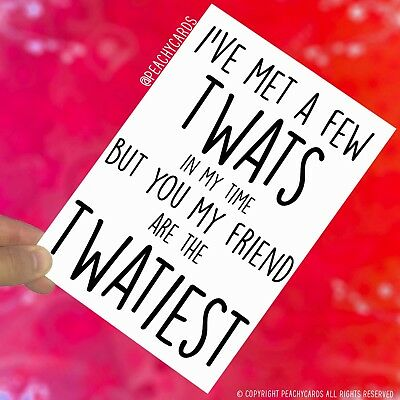 Funny Friend Cards Best Friend Rude Birthday Colleague Twat Christmas Card PC522