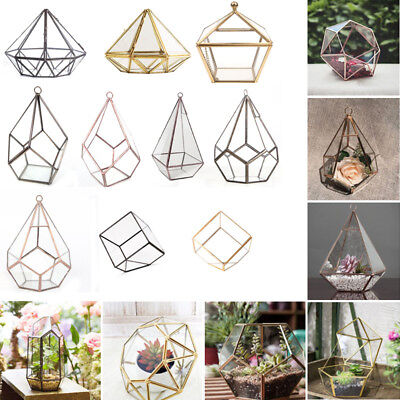 Irregular Prism Glass Geometric Terrarium Tabletop Box Flower Pot Planter Large