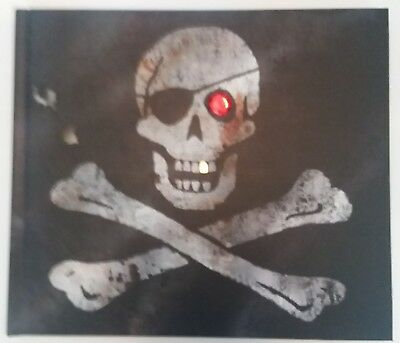 History of Pirates by John Matthews Hardcover Picture Book Adventure