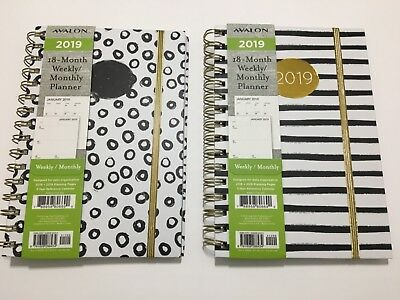 2019 AVALON 18-Month Weekly/Monthly Calendar Planner Appointment Book SPIRA