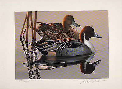 RW50 1983 FEDERAL DUCK STAMP PRINT PINTAILS by Phil Scholer List