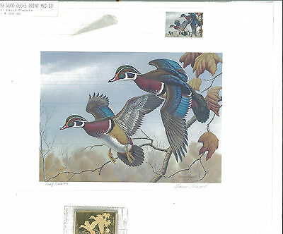KENTUCKY #2 1986 STATE DUCK STAMP PRINT WOOD DUCKS by David Chappel Med Ed