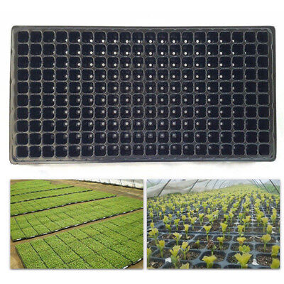 200 Cell Seedling Starter Tray Seed Germination Plant Propagation SMHN