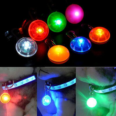 LED Fascinating Pet Dog Cat Puppy Flashing Collar Safety Night Light Pendant