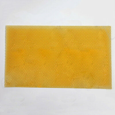 1x National Beehive Brood Box Wired Wax Foundation Sheet Beekeeping Cell  pols