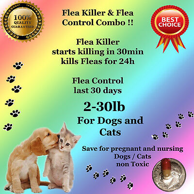 Instant Flea Killer and Control COMBO 6+6 small Dogs or Cats 2-30lb prevention