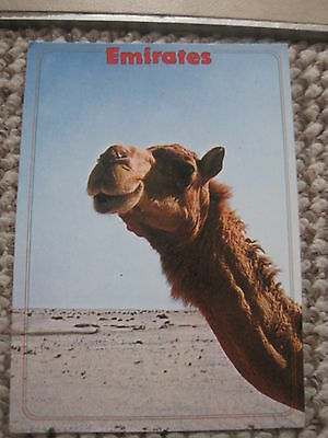 Dubai Emirates  Camel The Desert Ship  Postcard Middle East Unused 1980's