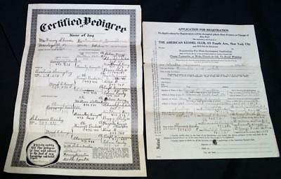 Akc American Kennel Club Boston Terrier Dog Registration Forms 1931 Vintage