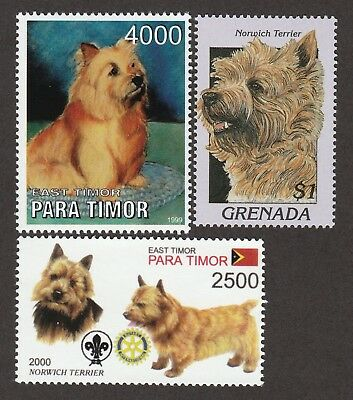 NORWICH TERRIER ** Int'l Dog Postage Stamp Collection ** Great Gift Idea **