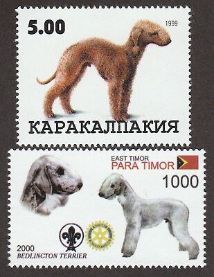 BEDLINGTON TERRIER ** Int'l Dog Postage Stamp Collection ** Great Gift Idea **