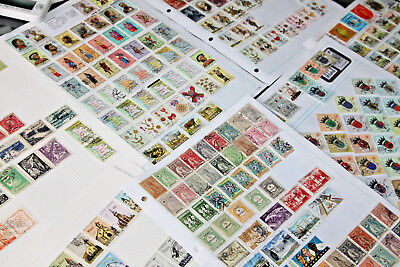 Angola - Large Mint & Used Collection On Leaves - 350-400 Stamps
